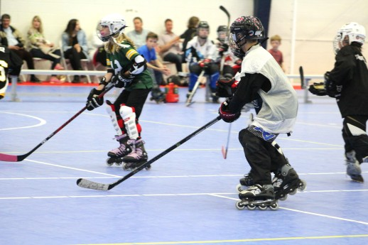 Farm Tough Hockey REC Leauge 3